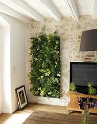 Mur v g tal les murs de votre maison neuve respirent for Mur vegetal interieur maison